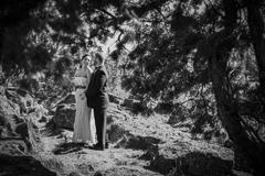 featurehighlight-blog-ByronRoePhotography-1