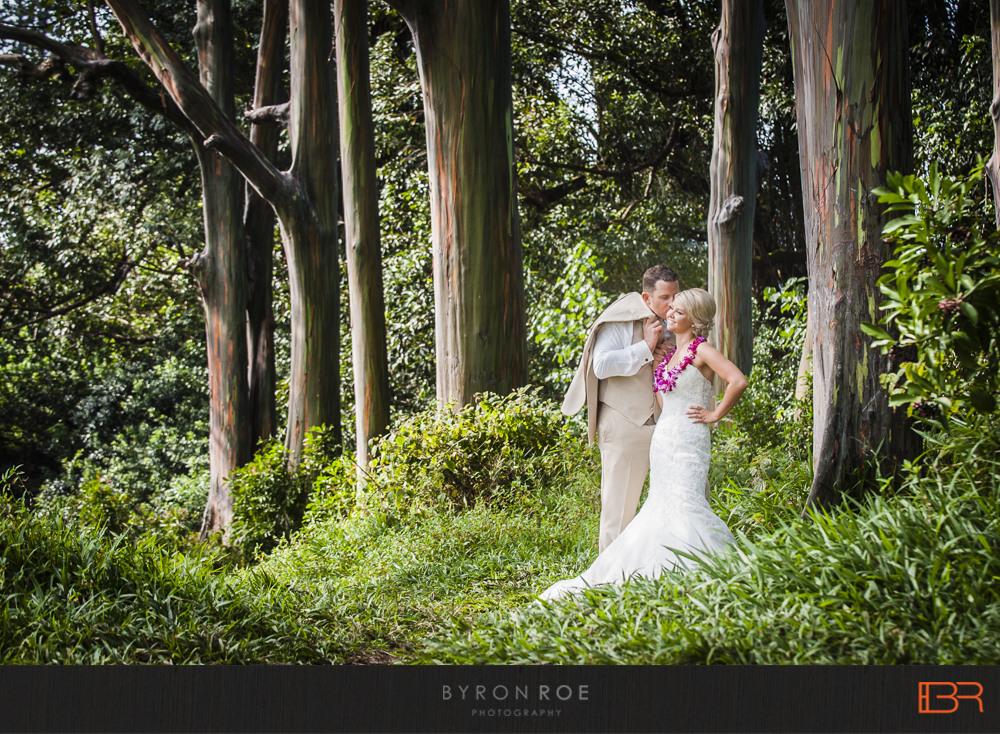 Wedding Hawaii Waterfall